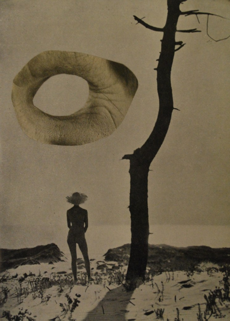 Jonathan Baxter - Untitled collage - 2012