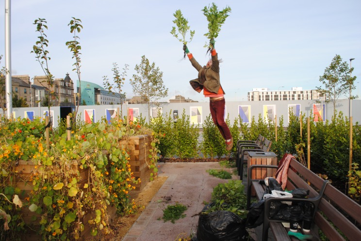 Jonathan Baxter - Dundee Urban Orchard - Slessor Gardens - Maintenance and Care